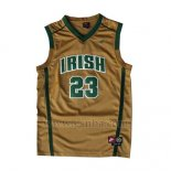 Camiseta St. Vincent-St. Mary LeBron James #23 Oro
